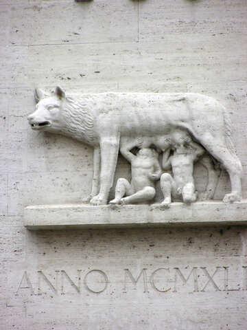 BAS Lobo Capitolino №12593