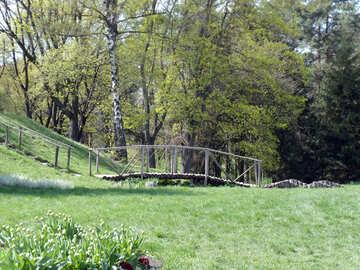 Holzbrücke in der Landschaft №12913
