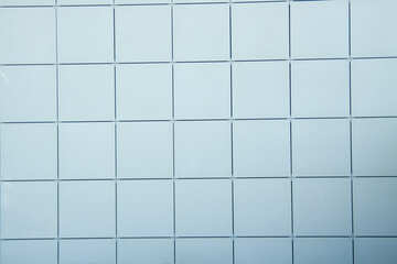 Texture.Glazed clay tiles. White. №12799