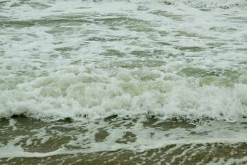 Seaside №12719