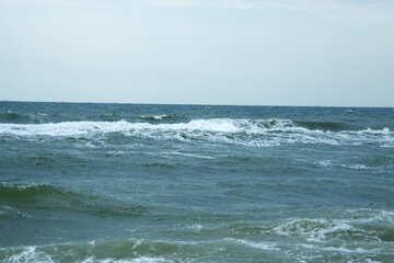 Wave №12687