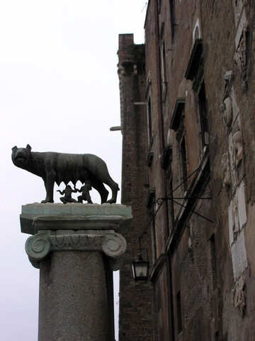 Capitoline Wolf №12587