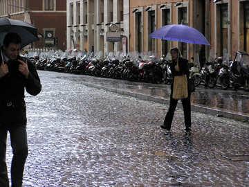 Las personas bajo el paraguas №12505