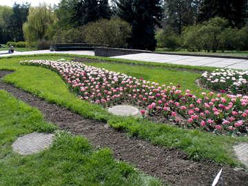 Flowerbed on slope №12941
