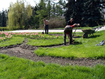 Lavori di primavera nel giardino №12936