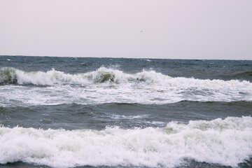 Stormy sea №12717