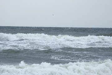 Waves near the shore №12721