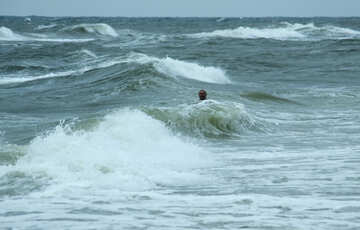 Swimming in the waves №12729