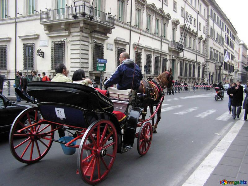 Pleasure horse transport №12365