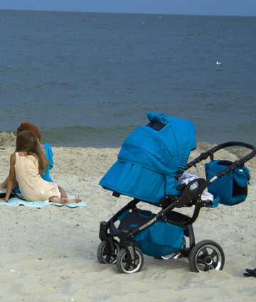 Buggy on the beach №13464