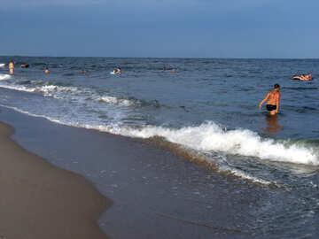 Kinder am Meer №13535