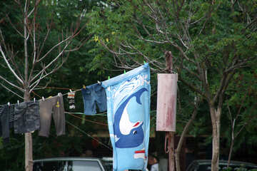Laundry drying on rope №13664