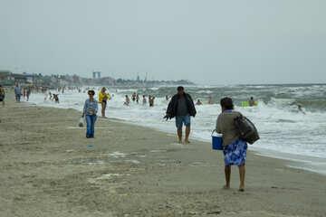 Piccole imprese sulla spiaggia №13472