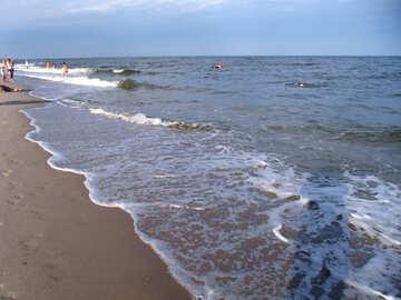 Seaside №13520
