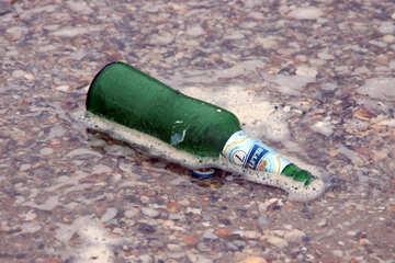 Drinking on the beach №13704