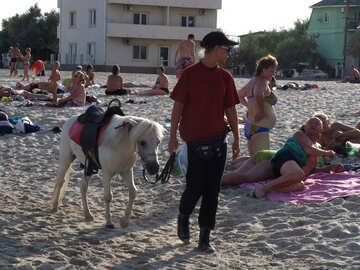 Spiaggia Pony №13582