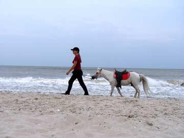 Proprietario di pony №13644