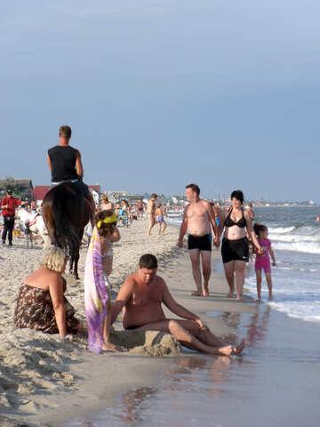 Beach horse working №13536