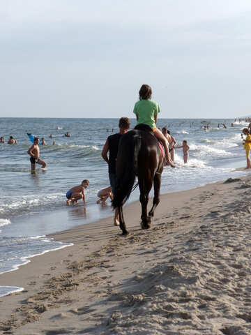 Катание на лошадях на море №13491