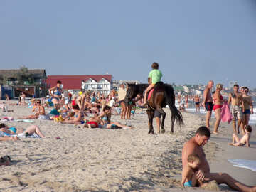 Катание на лошадях на пляже №13533