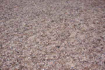 Sand and shells №13854
