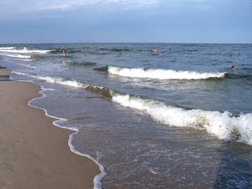 Summer sea №13637