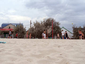 Volleyball on the beach №13636