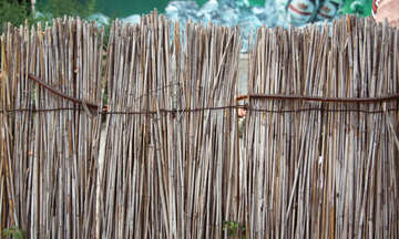 Texture of reed fence №13988
