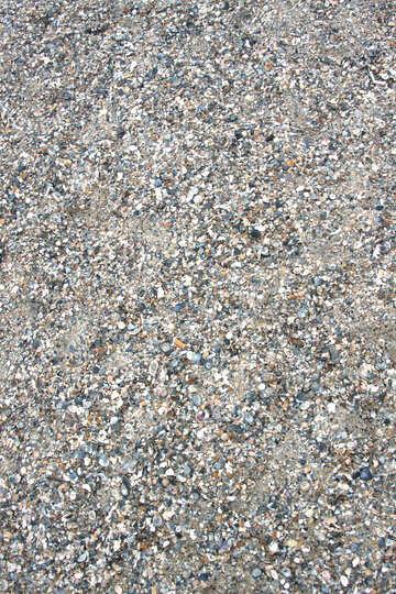 Seaside №13867