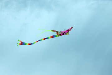 Fly kite №13403