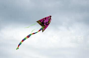 Fly kite №13406