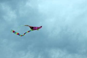 Fly kite №13412