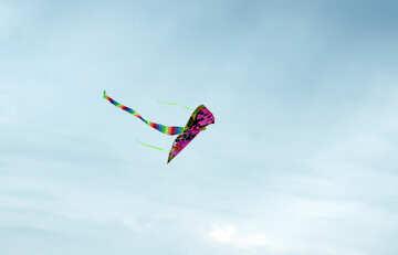 Flying kite №13414