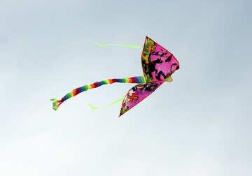 Kite №13408