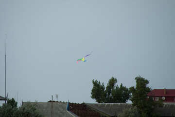 Kite flying over the roofs №13413
