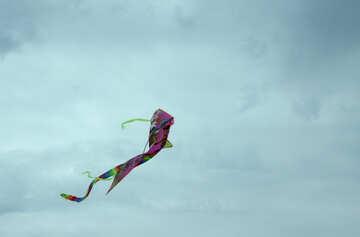 Kite in the sky №13404