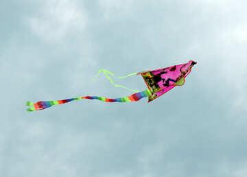 Kite in the sky №13405