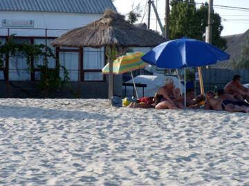 People hide under umbrellas on the beach №13483