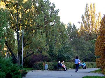 Autumn walk №13816