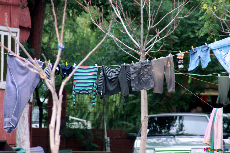 Drying clothes №13676
