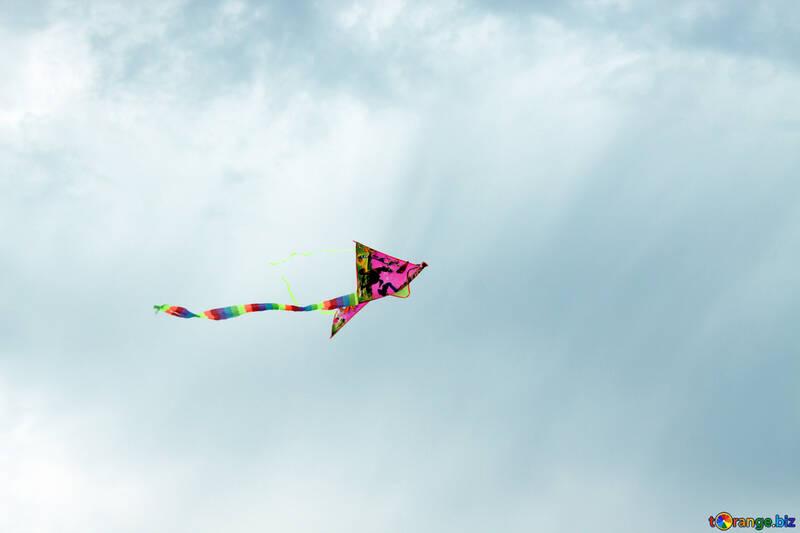 Kite in the sky №13410