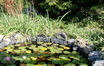 Artificial pond №14367