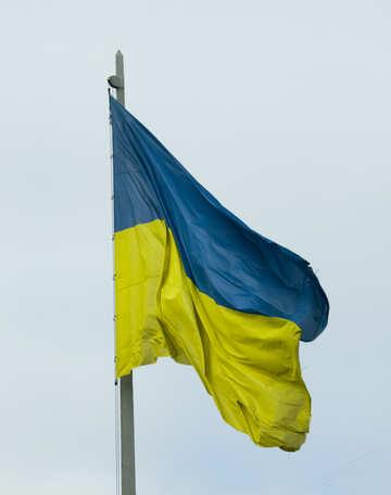 Flag of Ukraine №14741