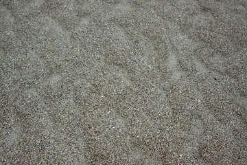 Texture sea sand №14448