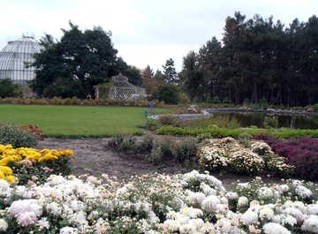 Autumn Garden №14303