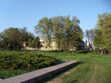 The city park №14036