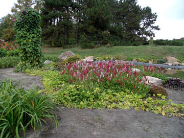 Herbst Blumenbeet №14300