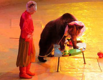 Circus bear №15796