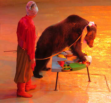 Bear at the circus №15797