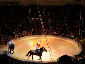 Circo cavalli №15789